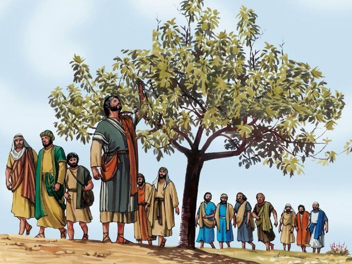 What prompted Jesus to Curse the Fig Tree? – dynaxty